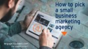 Small Business Marketing Agency – How To Pick One